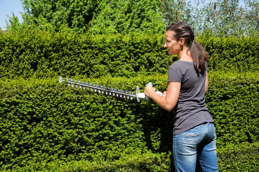 IKRA cordless hedgetrimmer to cut hedges